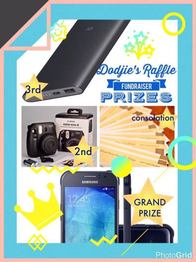 here are dodjie's raffle fundraiser prizes